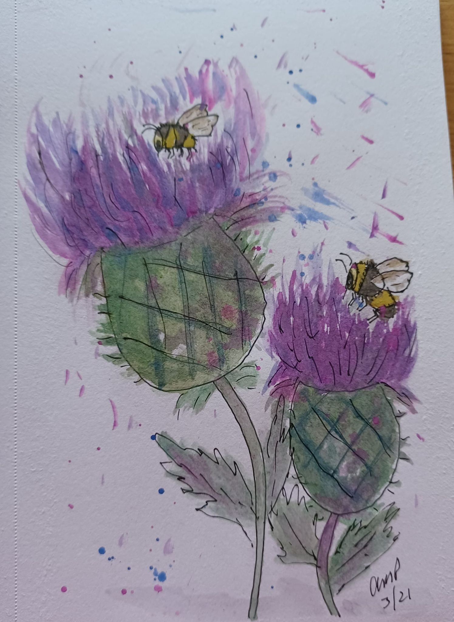 Watercolour of thistles and bees