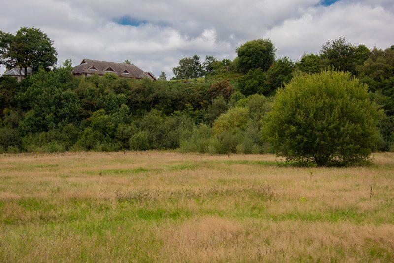 Havoc Meadow